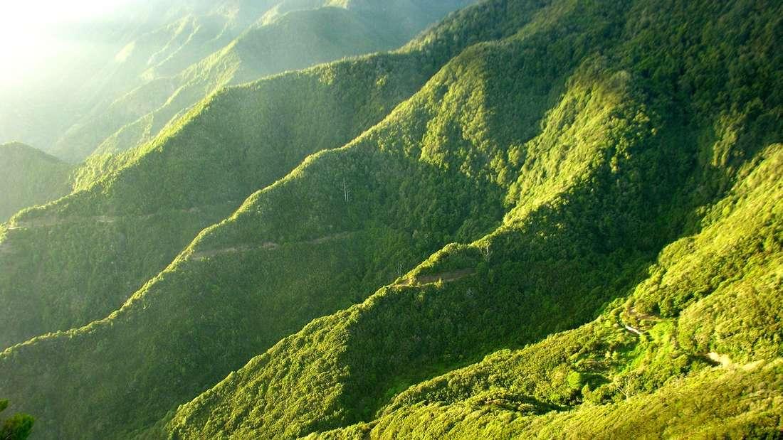 La Gomera Kanaren Insel Reise Urlaub