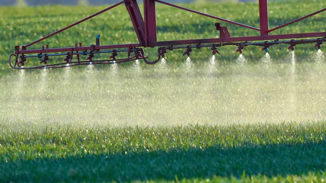 Pflanzenschutzmittel - Pestizide