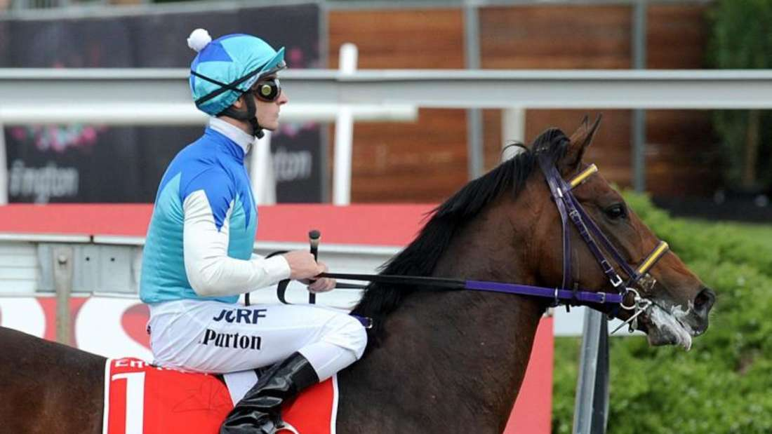 Admire Rakti beendet das Rennen als letztes Pferd und ist bereits sichtlich erschöpft. Foto: Joe Castro