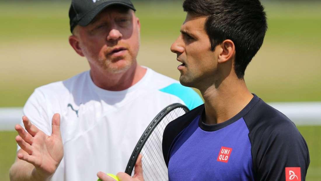 Tennis Becker IPTL