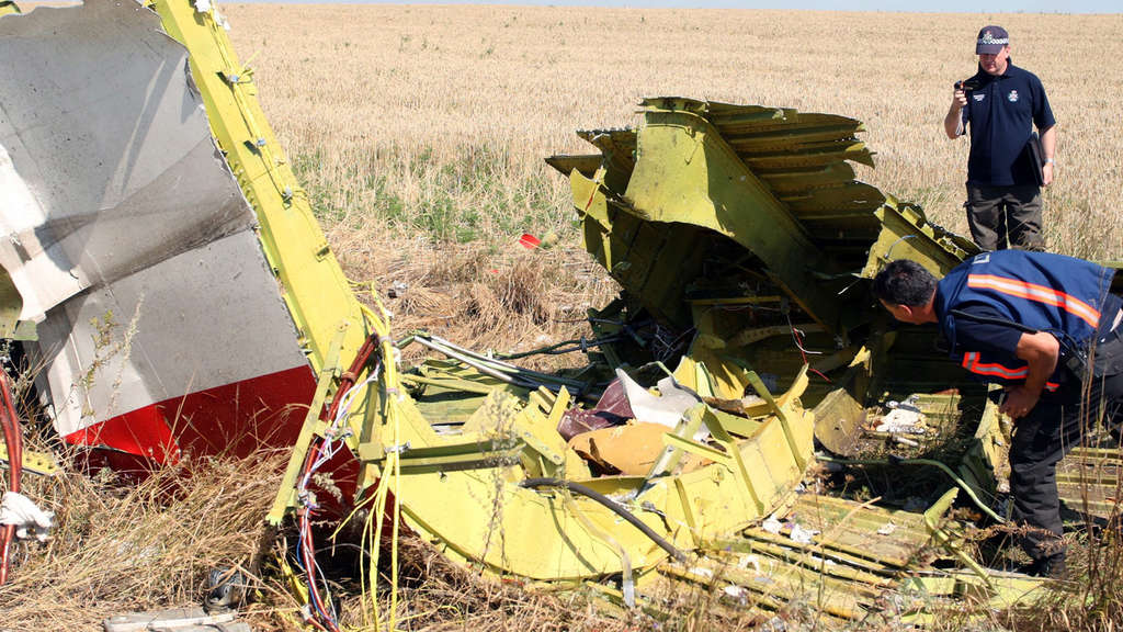 MH17, Malaysia Airlines