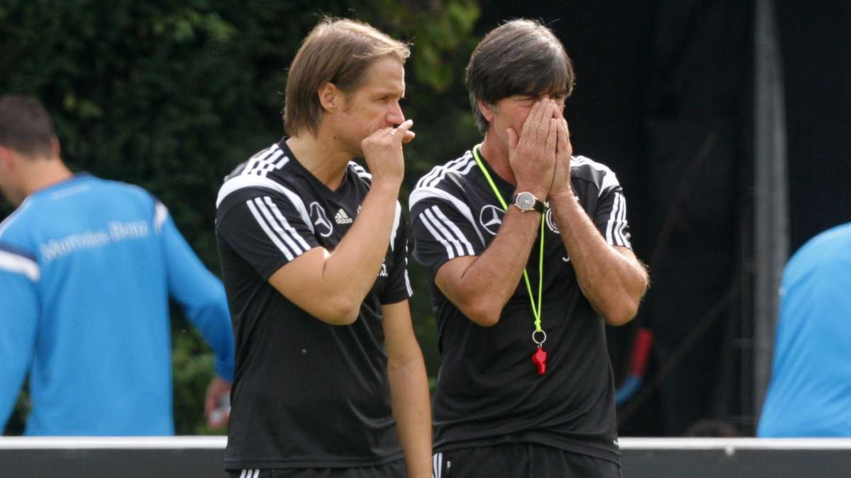 Dfb Co Trainer