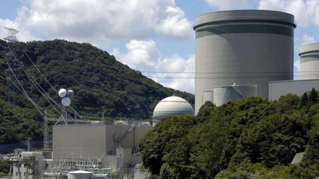Der Reaktor war erst am Freitag wieder eingeschaltet worden. Foto: Franck Robichon