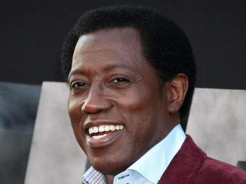 Wesley Snipes plant Actionfilme