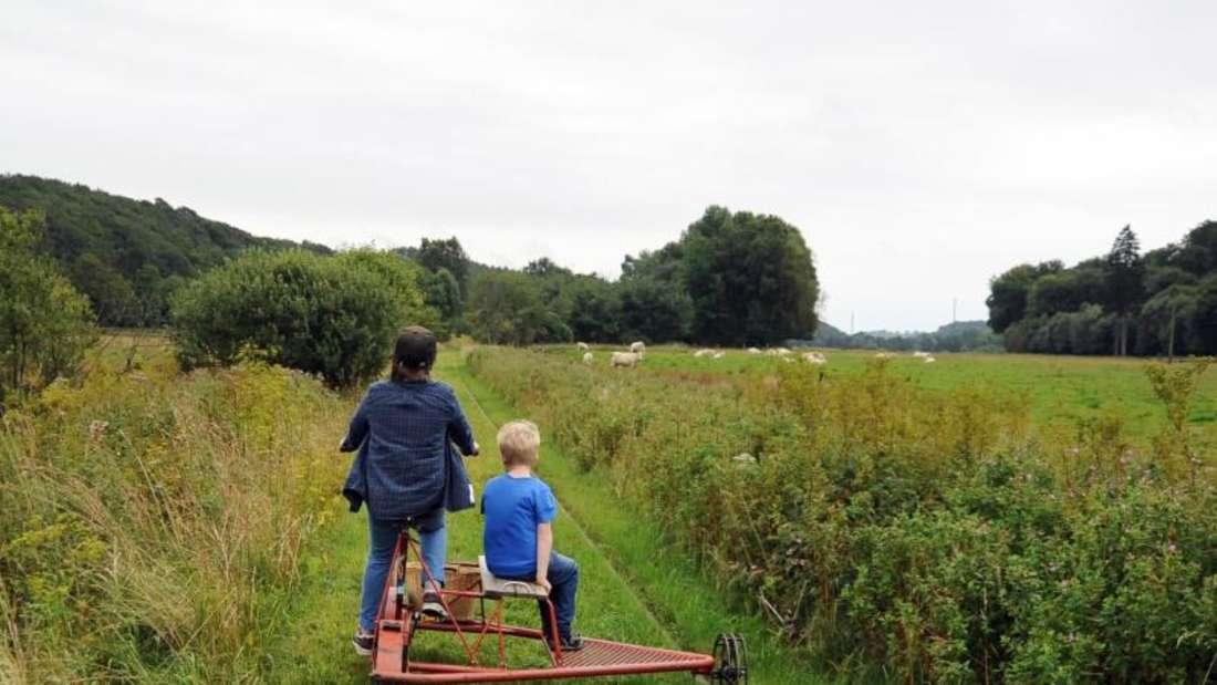 Auch für Kinder ist ein Ausflug mit den Draisinen gut geeignet. Die roten Schienenfahrrädern können auch die Jüngeren problemlos fahren. Foto:Falk Zielke