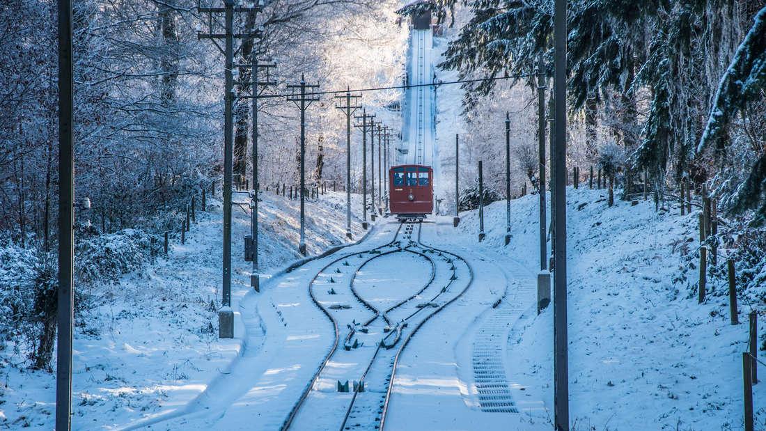 Winterzauber auf dem Heidelberger Königstuhl