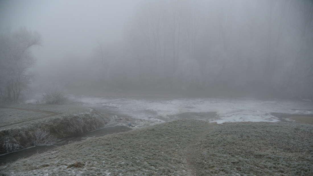 Anglersee in Brühl-Rohrhof, am Altrhein und Anglersee bei Ketsch