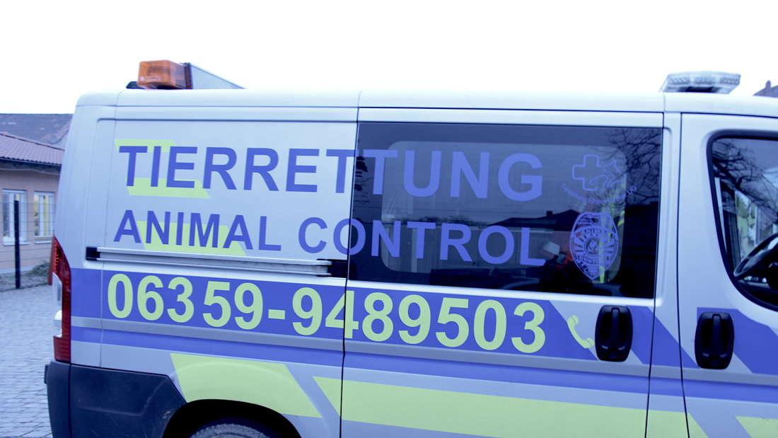 Ein Tag bei der Tierrettung Rhein-Neckar