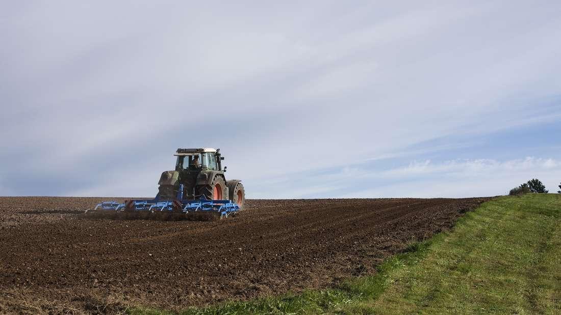 Platz 11: Knapp an den Top 10 vorbeigeschlittert sind die Landwirte.Sie erzeugen wichtigeNahrungsmittel und erhalten die Kulturlandschaft.