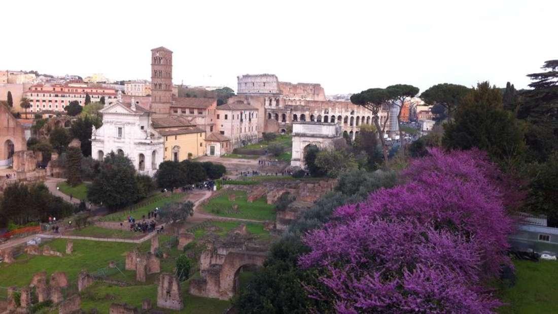Das Forum Romanum liegt zwischen den drei von insgesamt sieben Hügeln, auf denen Rom erbaut ist: Kapitol, Palatin und Esquilin. Die anderen vier heißen Quirinal, Viminal, Aventin undCaelius. Das Forum Romanum war der Mittelpunkt des politischen, wirtschaftlichen, kulturellen und religiösen Lebens des antiken Roms.