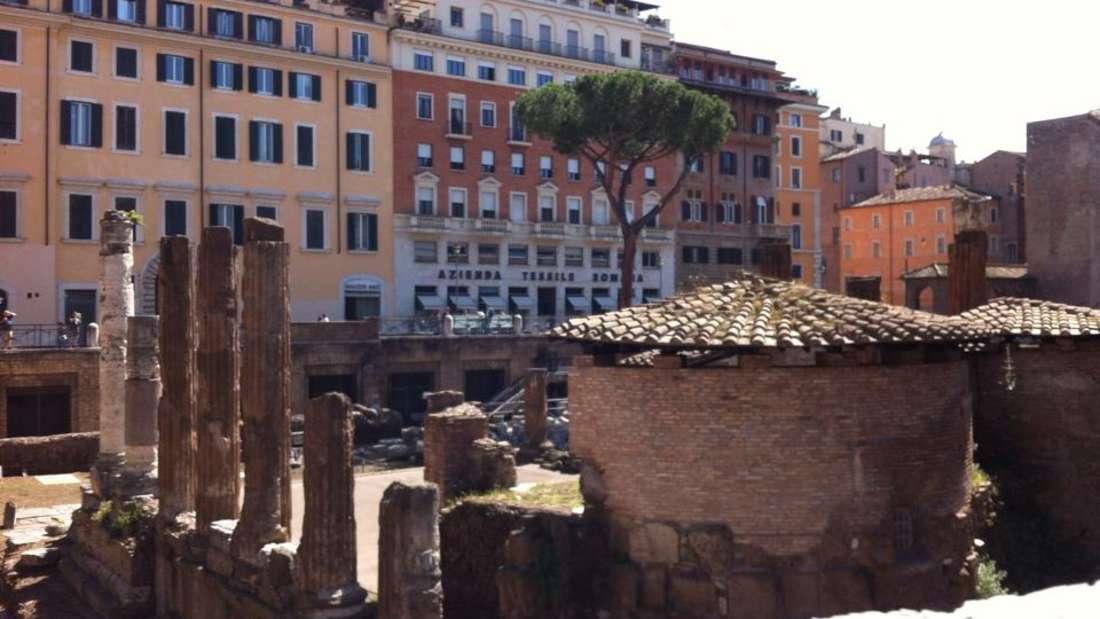 Der Largo di Torre Argentina ist ein Platz im Stadtviertel Pigna in Rom. Er enthält Ausgrabungen von antiken Tempeln und ist für Besucher nicht zugänglich. Dafürist dasAusgrabungsarealaber für seine zahlreichen Katzen bekannt, die dort leben und von vielen Anwohner und einer Pflegestation am Rande des Platzes gefüttert und gepflegt werden.