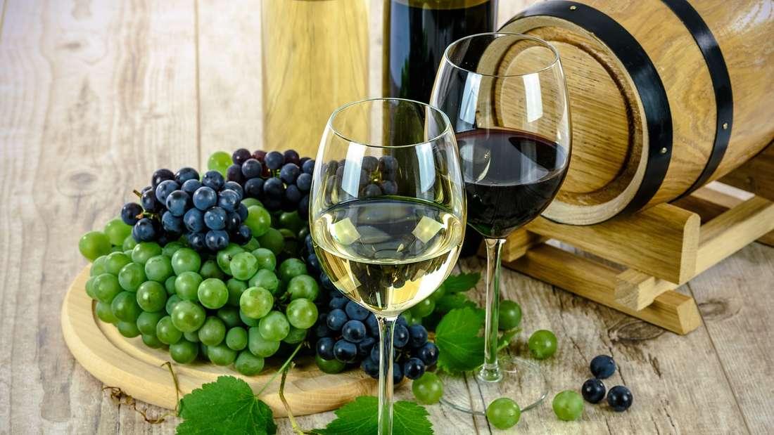 Wein: Die in Rotwein enthaltenen chromogenen Moleküle und Tanninekönnen zu einer Verfärbung der Zähne führen. Gleichzeitig schadetdie Säure in Rot- und Weißwein dem Zahnschmelz.