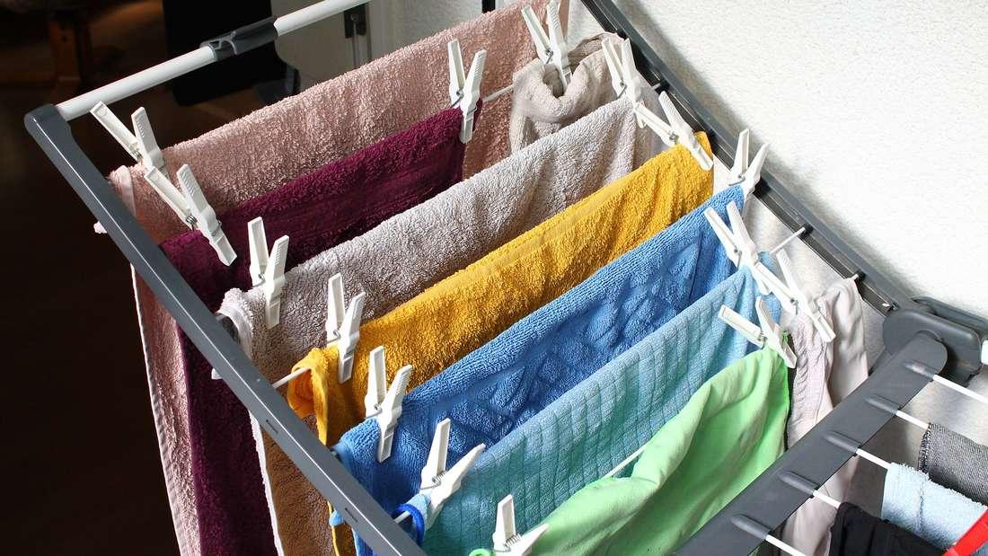 Viele Vermieter fürchten Schimmel, wenn nasse Wäsche in der Wohnung getrocknet wird.