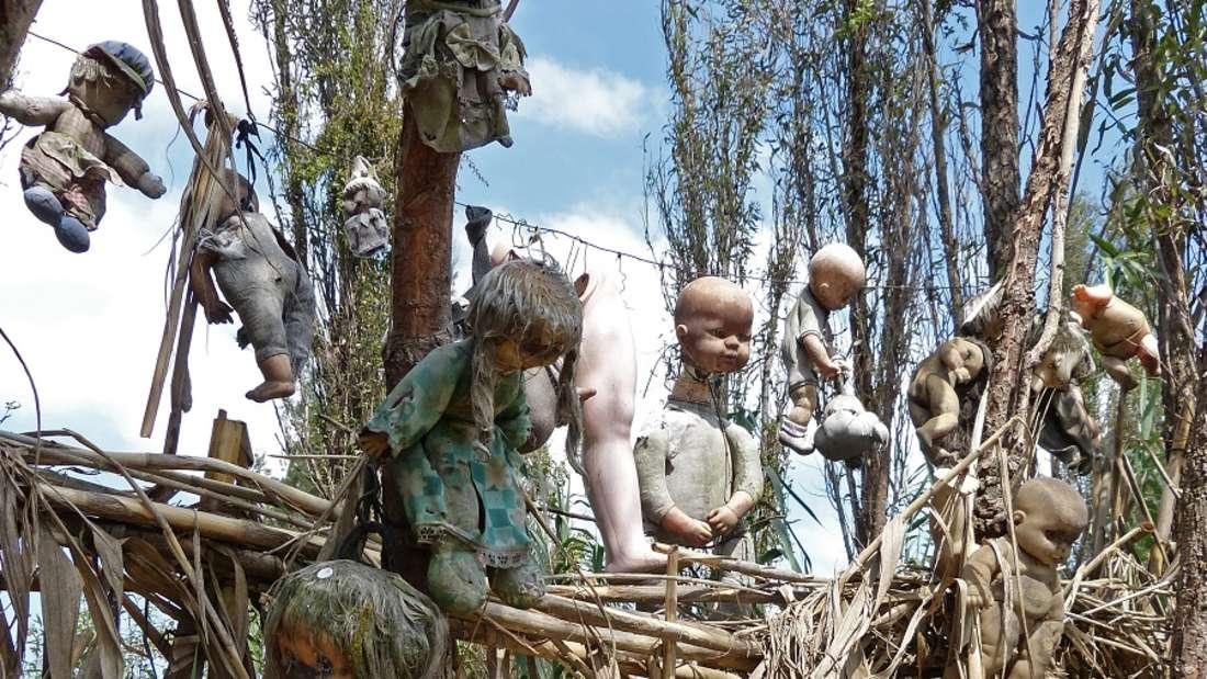Mexiko-Stadt:Mit dem Boot zur Insel der verstümmelten Puppen - würden Sie sich trauen?