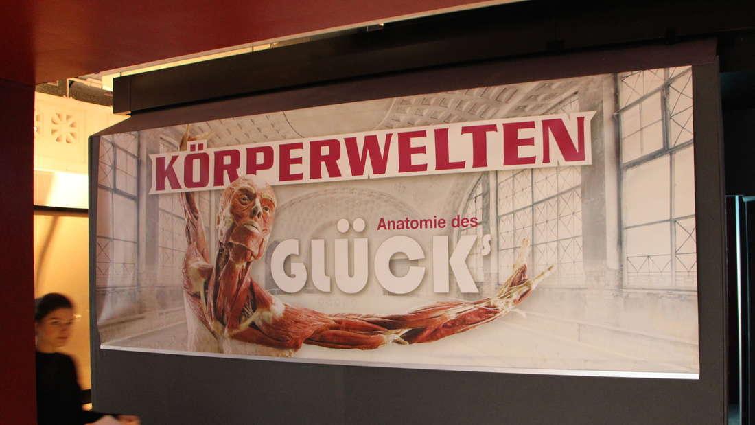 Gunther von Hagens' KÖRPERWELTEN im Alten Hallenbad in Heidelberg.