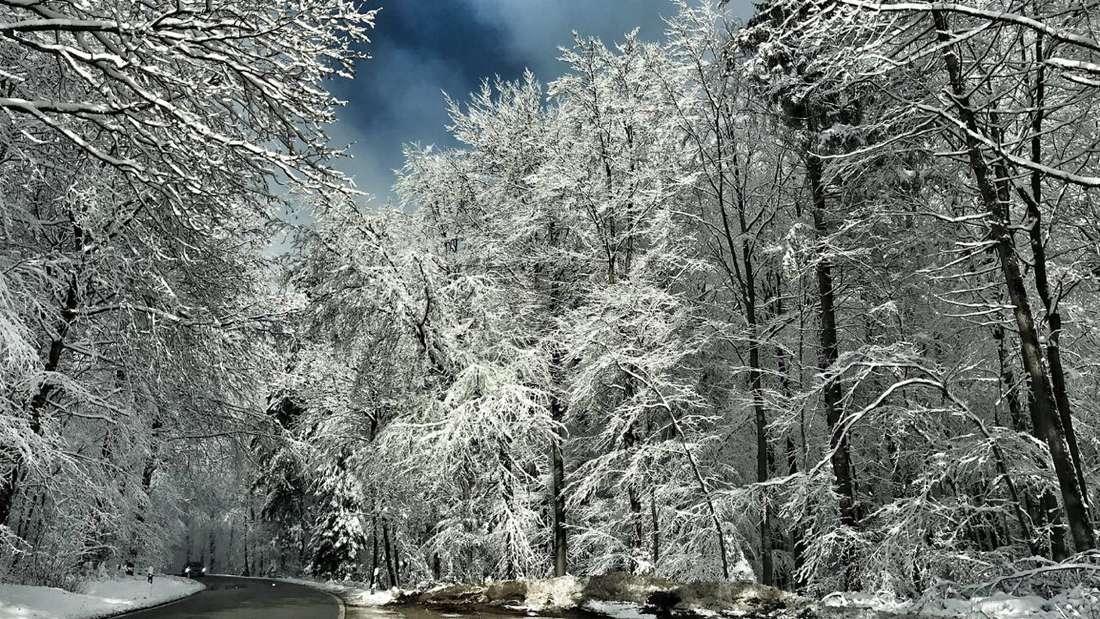 So schön weiß ist der erste Advent in der Rhein-Neckar-Region!