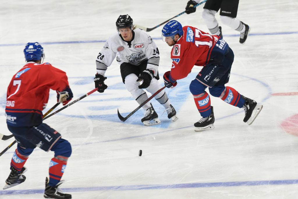 Spielplan Ice Tigers Nürnberg