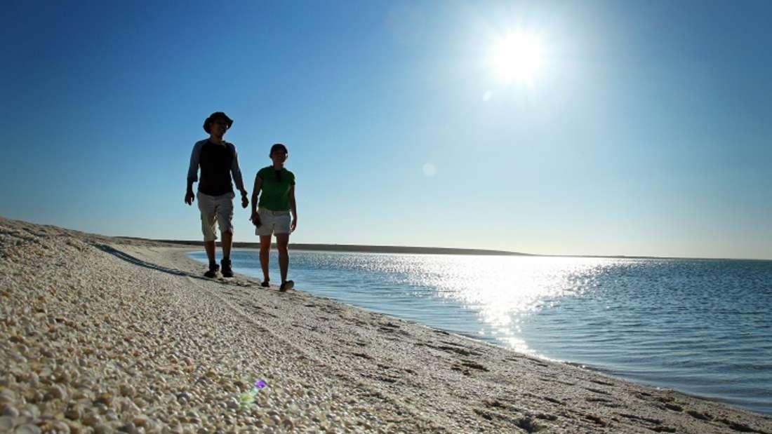 Shell Beach, Australien: Sand suchen Urlauber am ebenfalls in Australien gelegenen Shell Beach vergebens: Am UNESCO-Welterbe Shark Bay, liegt der etwa 60 Kilometer lange Küstenabschnitt, der komplett aus Muscheln besteht und damit einer von nur zwei Muschel-Stränden weltweit ist. Millionen von kleinen Muscheln und das tiefblaue Meer machen den Strand so besonders – allerdings sollten Urlauber ihre Flip-Flops nicht vergessen.