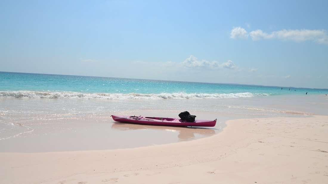 """Pink Beach, Harbour Island, Bahamas: Strand in """"schweinchenrosa"""": Die Harbour Island auf den Bahamas ist für ihren Pink Sand Beach, der sich an der östlichen Inselseite befindet, bekannt und gilt als einer der schönsten Strände der Bahamas. Die rosa Farbe des Sandes kommt von mikroskopisch kleinen Koralleninsekten, den Foraminiferen, die eine hellrosa bis rote Schale haben und dem Strand seine ungewöhnliche Farbe geben."""