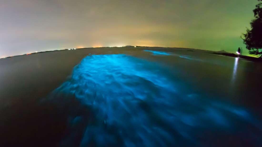 Glitzer-Strände auf den Malediven: Hier lohnt sich ein Strandbesuch nach Sonnenuntergang: Wenn die Dunkelheit einbricht, verwandeln sich die Strände der Inseln Mudhoo, Vaadhoo und Rangali auf den Malediven in wahre Glitzerstrände. Für das einzigartige Naturschauspiel sind Mikroorganismen im Plankton verantwortlich, die durch die Bewegung des Wellengangs anfangen zu leuchten.