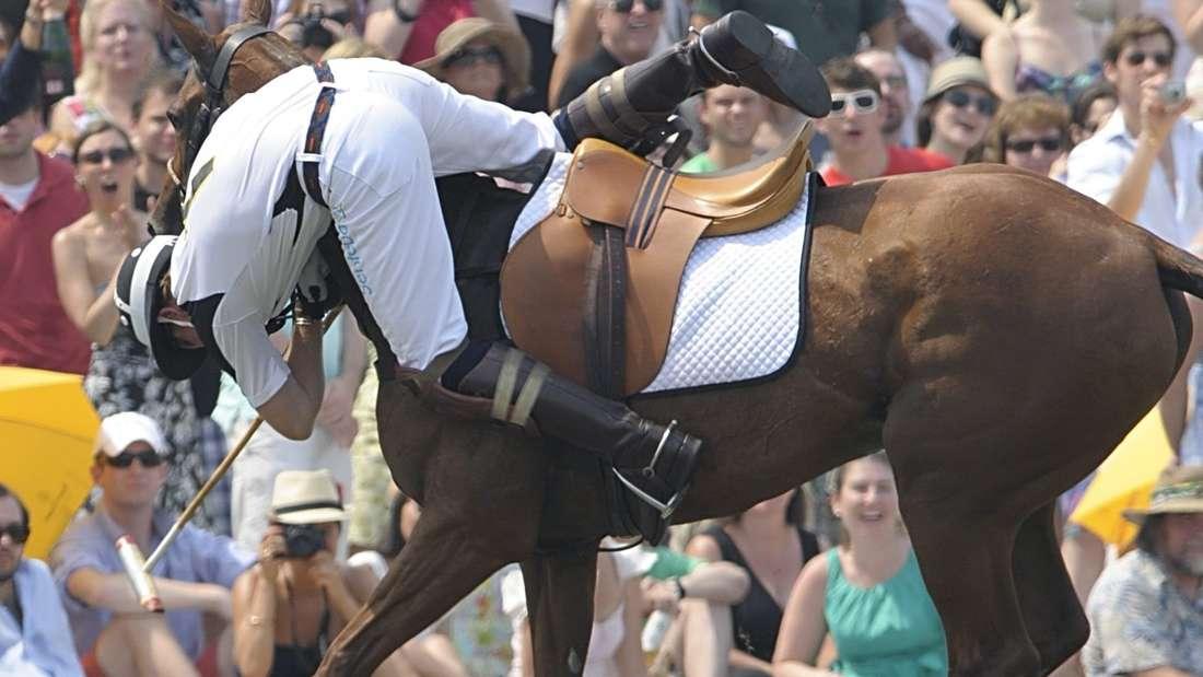 Queen Elizabeth II. ist eine Pferdenärrin. Prinz Harry zeigt sein Temperament beim Polo. Dabei riskiert der Windsor-Spross allerdings oft Kopf und Kragen.