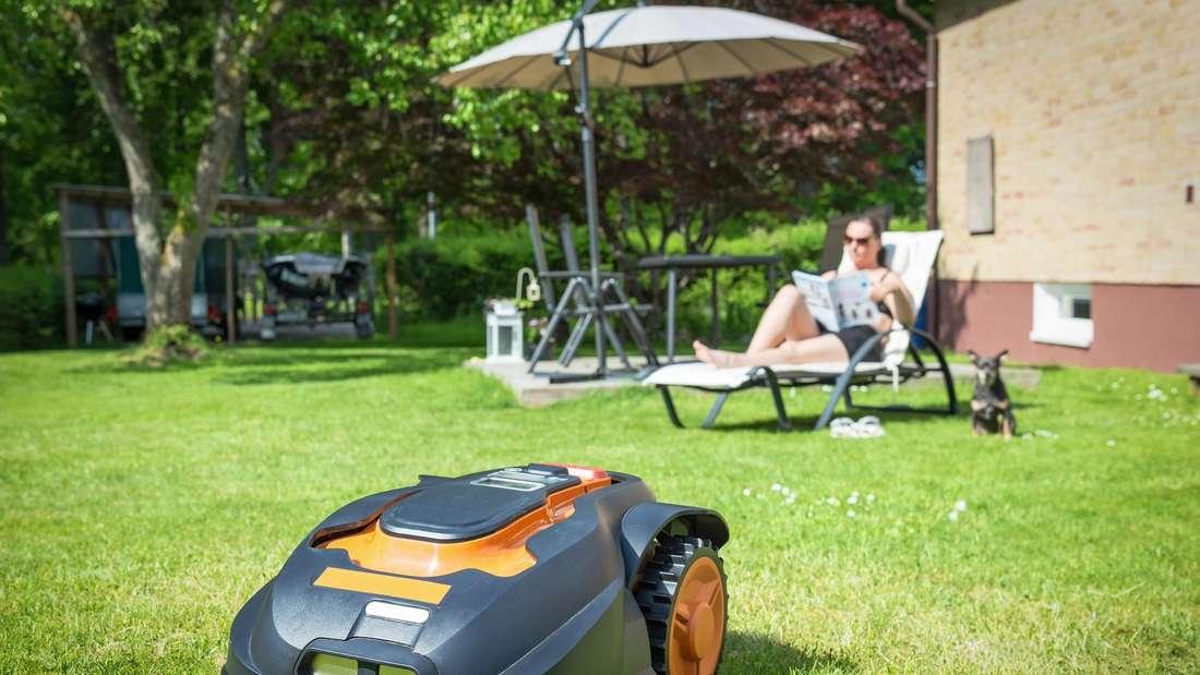 Moderne Mähroboter kommen mit Steigungen und kleinen Unebenheiten zurecht und pflegen große Rasenflächen.