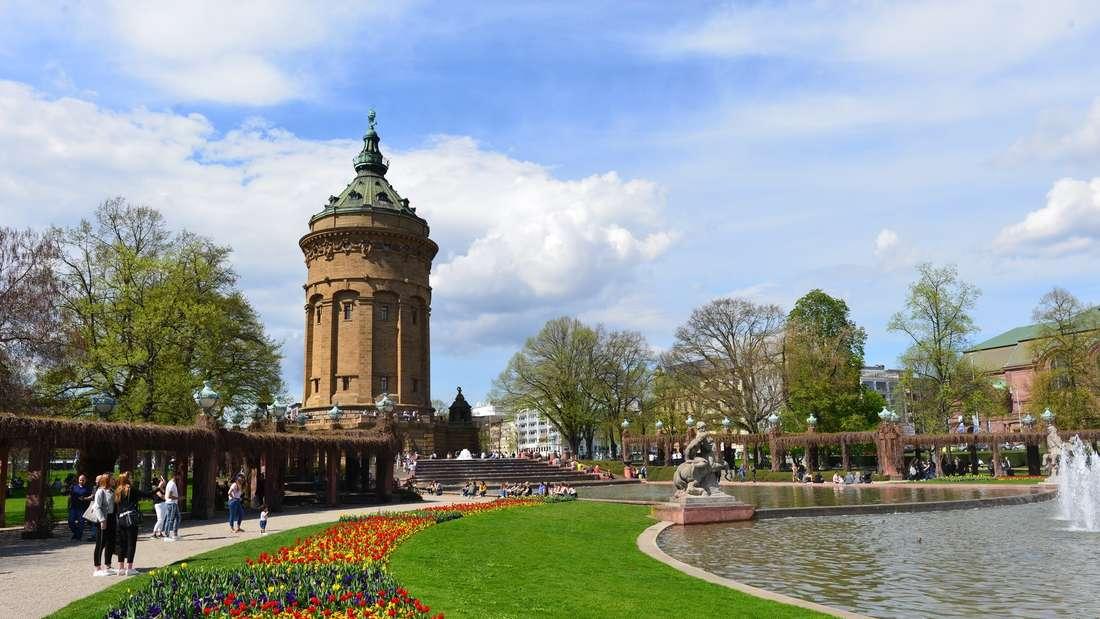 Bei der BUGA 2023 wird Mannheim die Hauptstadt der Blumen.