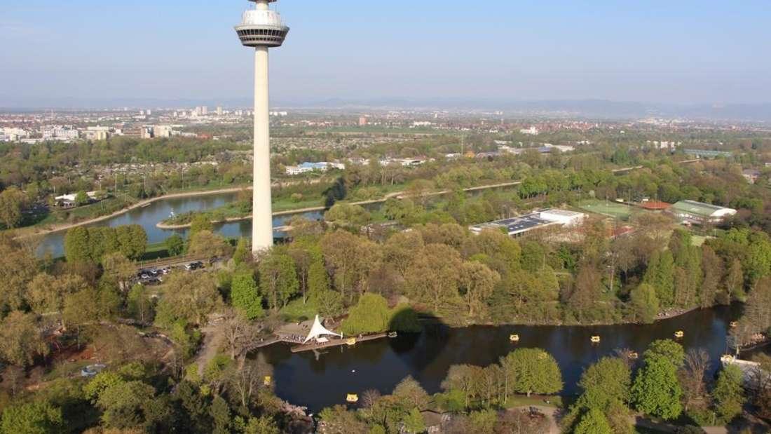 Der Luisenpark Mannheim aus der Kuft.