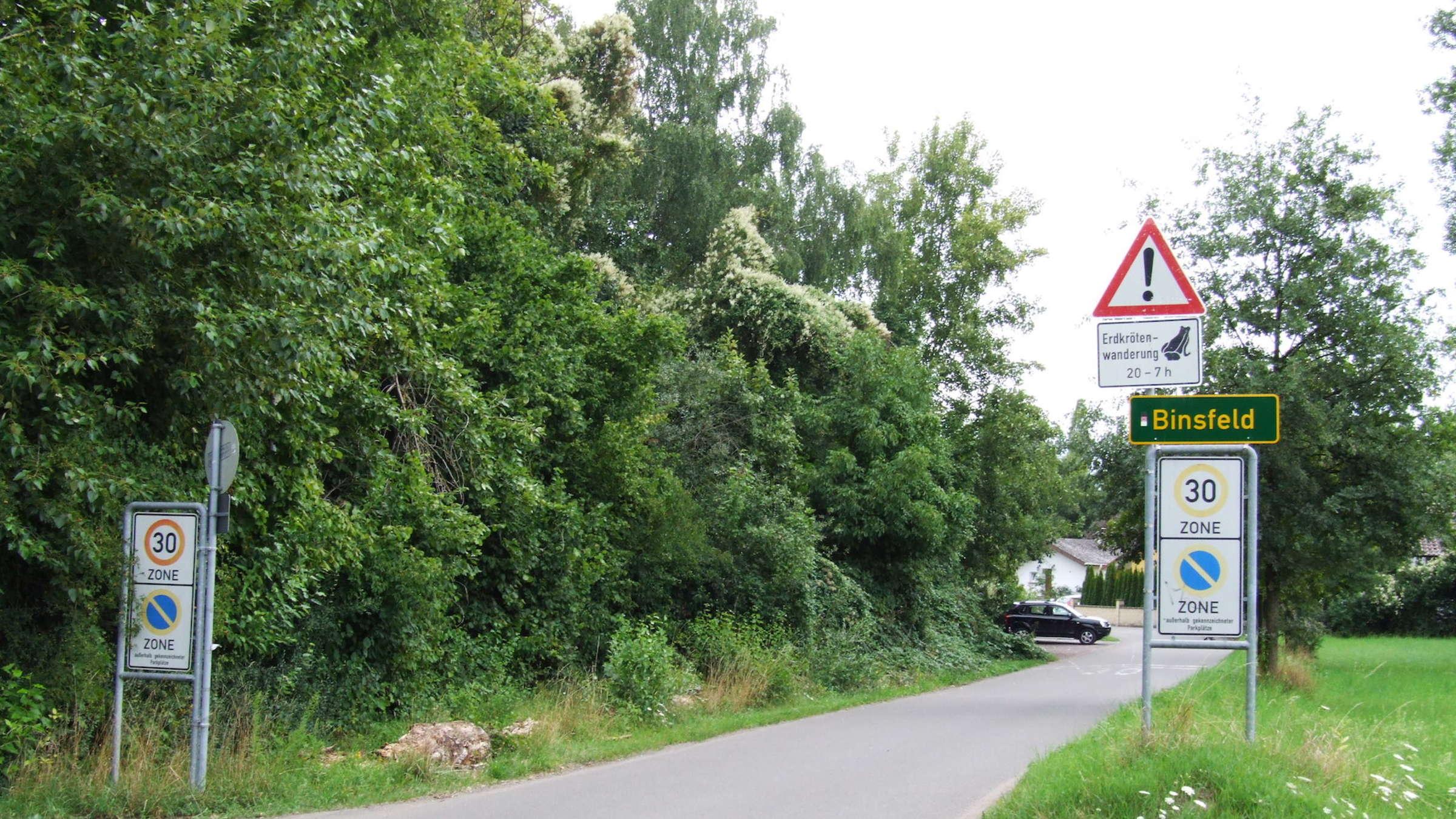 Binsfeld see speyer