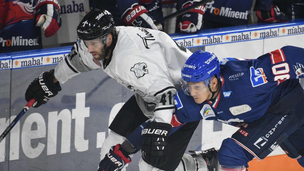 Adler Mannheim Vor Den Spielen Gegen Nürnberg Ice Tigers Und
