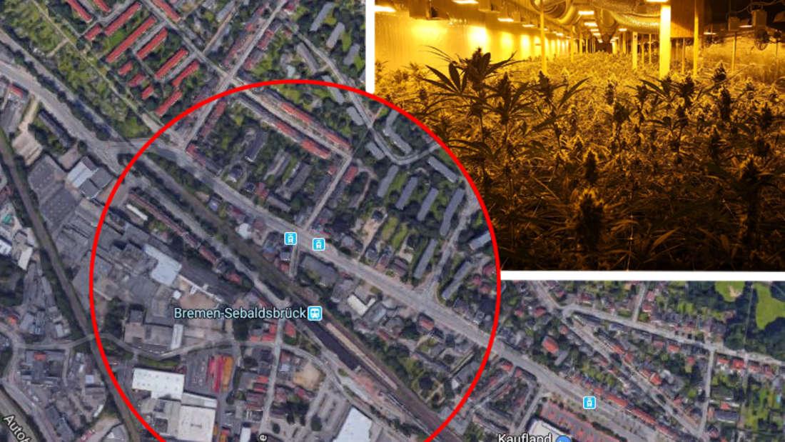 Bremen: Drogen-Plantage in einem Bunker in Hemelingen entdeckt.
