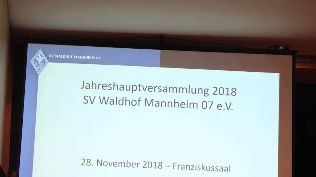 Waldhof-Mitgliederversammlung 2018
