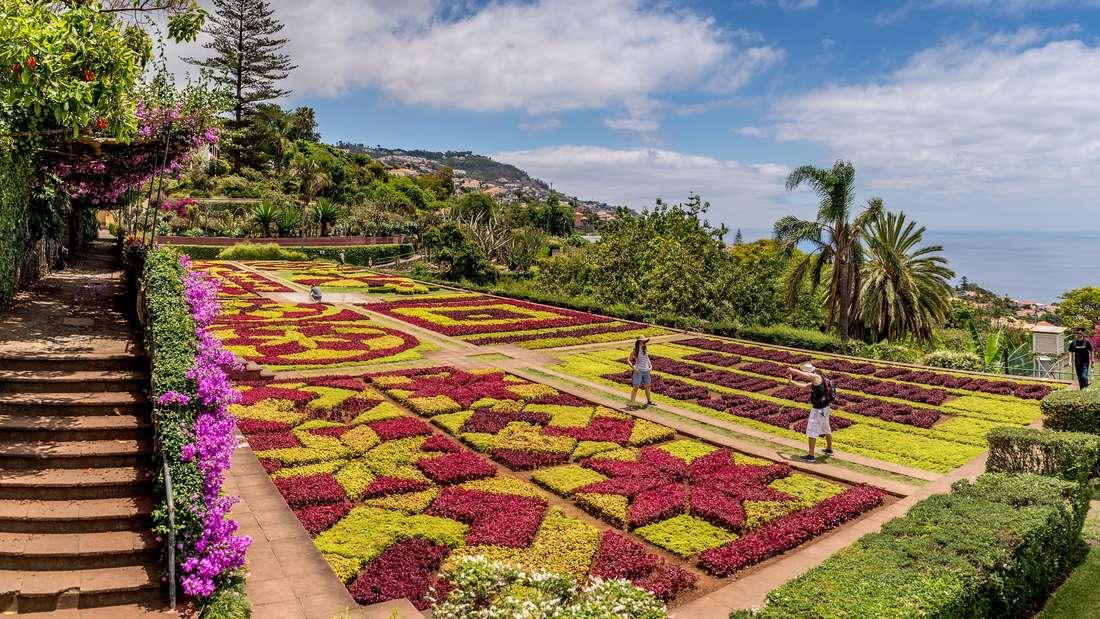 Im April mit dem Kreuzfahrtschiff durch den die Kanaren und Madeira.