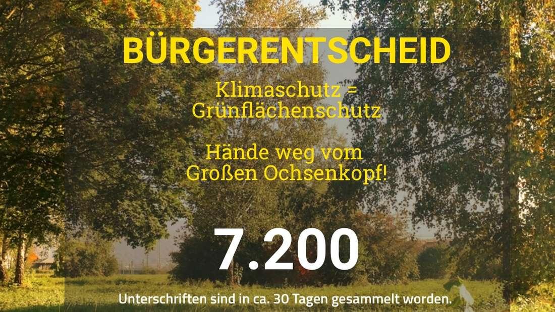 Screenshot Bürgerentscheid Ochsenkopfwiese (1. März 2019, 17:00 Uhr)
