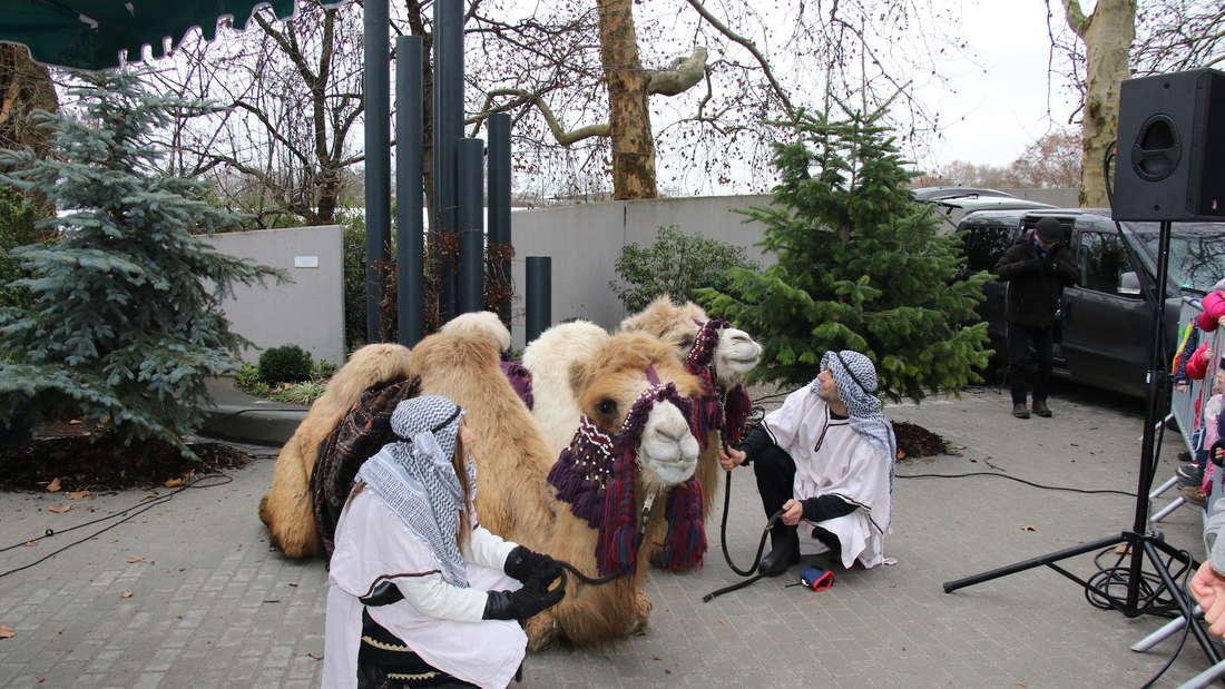 Zahlreiche Besucher nehmen am Dreikönigsumzug im Luisenpark teil.