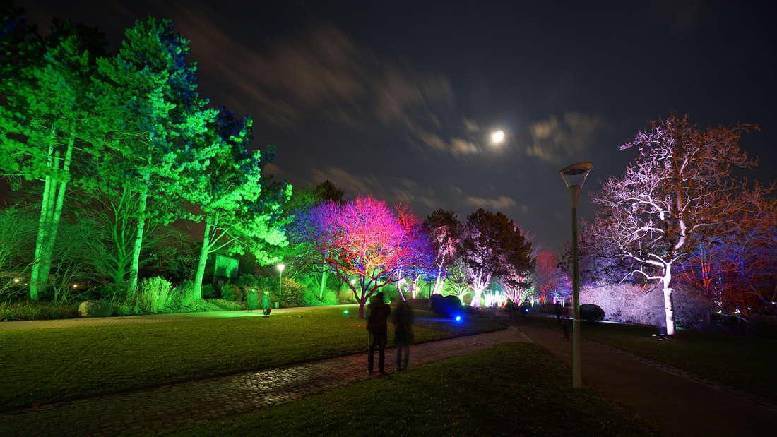 Die 'Winterlichter' 2019 vom 19. Januar bis 25. Februar im Luisenpark
