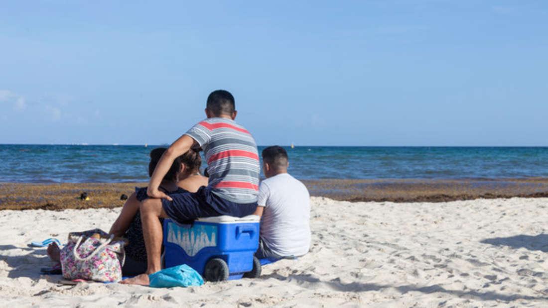 Eine 15-köpfige Touristenfamilie hat in Neuseeland für einen echten Eklat gesorgt. (Symbolbild)