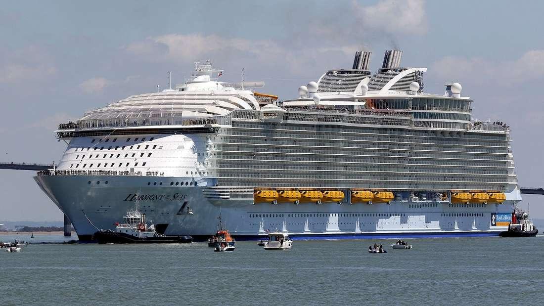 Drei Wochen auf einem Kreuzfahrtschiff durch die Weltgeschichte gondeln - und das auch noch gegen Bezahlung.