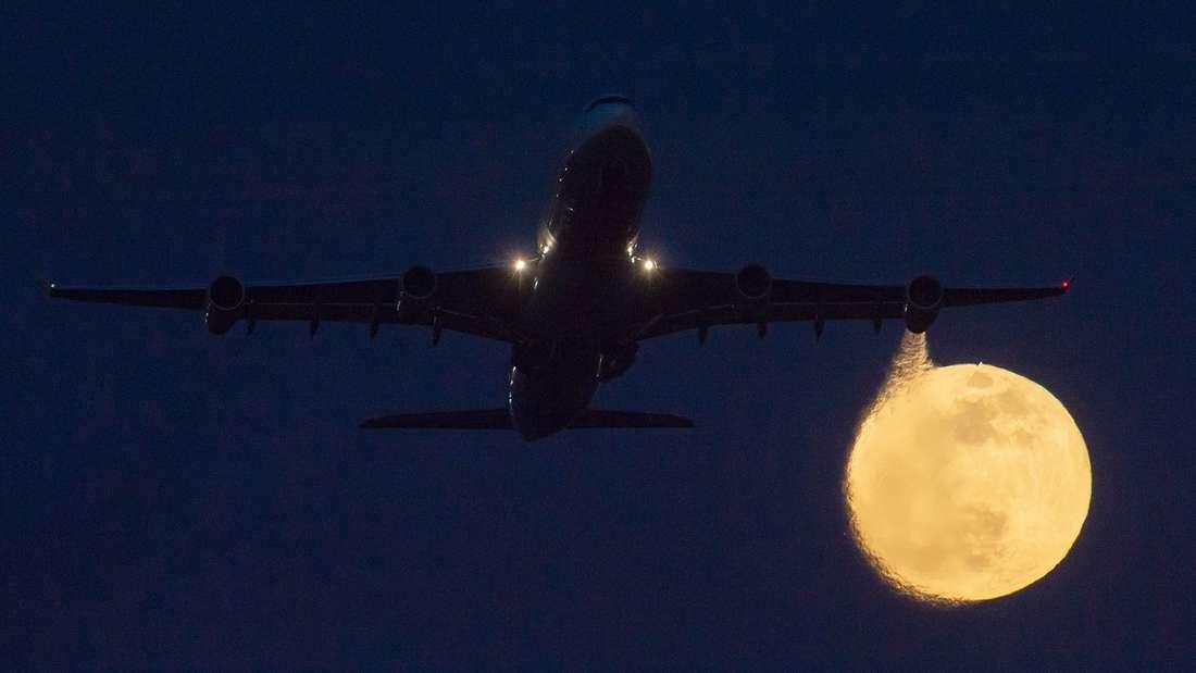 In einem Flugzeug machten Passagiere eine schockierende Entdeckung.