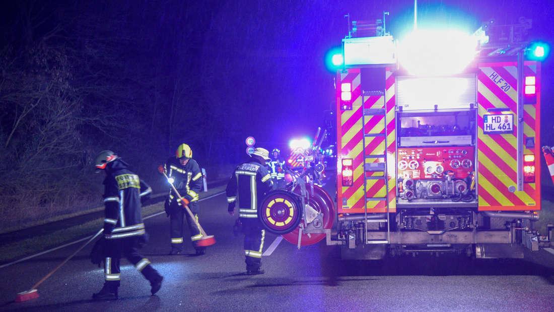 Wildunfall auf der B291 bei Schwetzingen