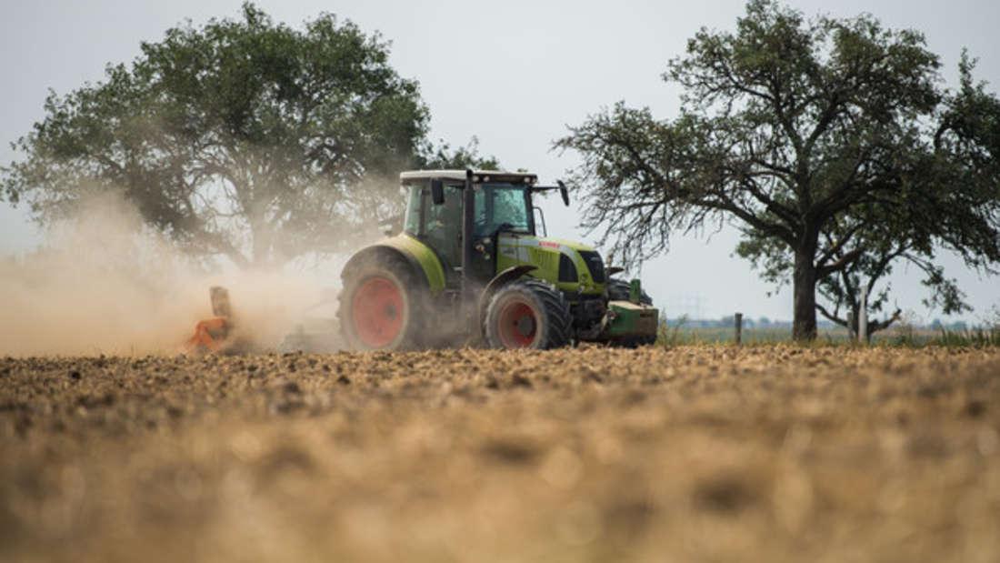 Ein Traktor brachte seinen Fahrer in Niedersachsen jetzt in Lebensgefahr. (Symbolbild)