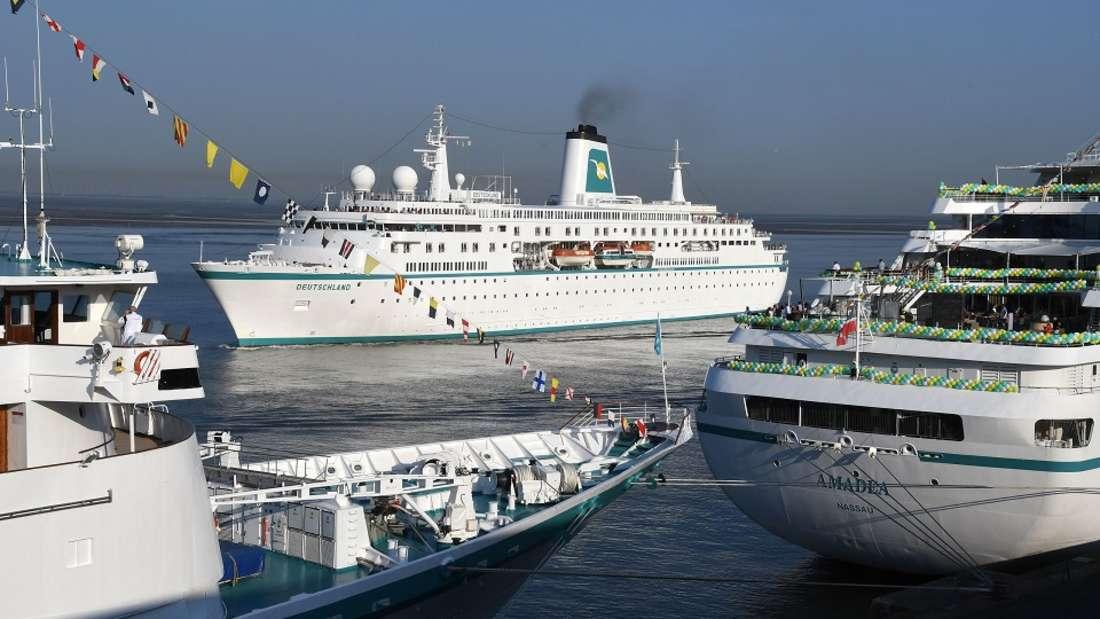 Kreuzfahrtschiffe sind beliebt - aber welche am meisten?