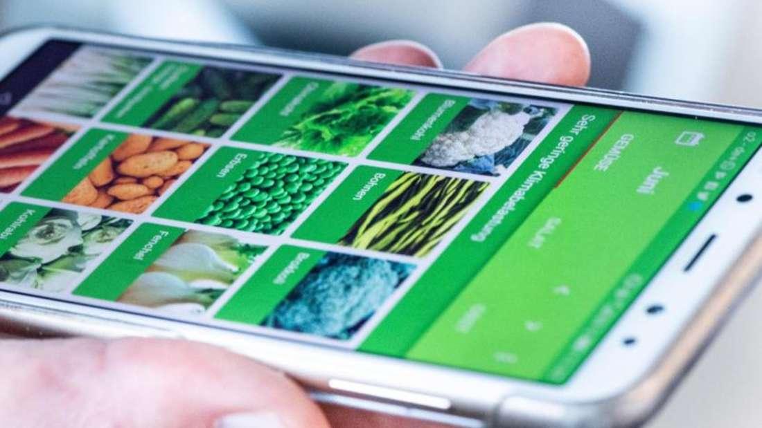 Welches Gemüse und Obst wächst gerade auf heimischen Feldern? Die App «Grünzeit» zeigt es mit Hilfe eines Ampelsystems. Foto: Franziska Gabbert