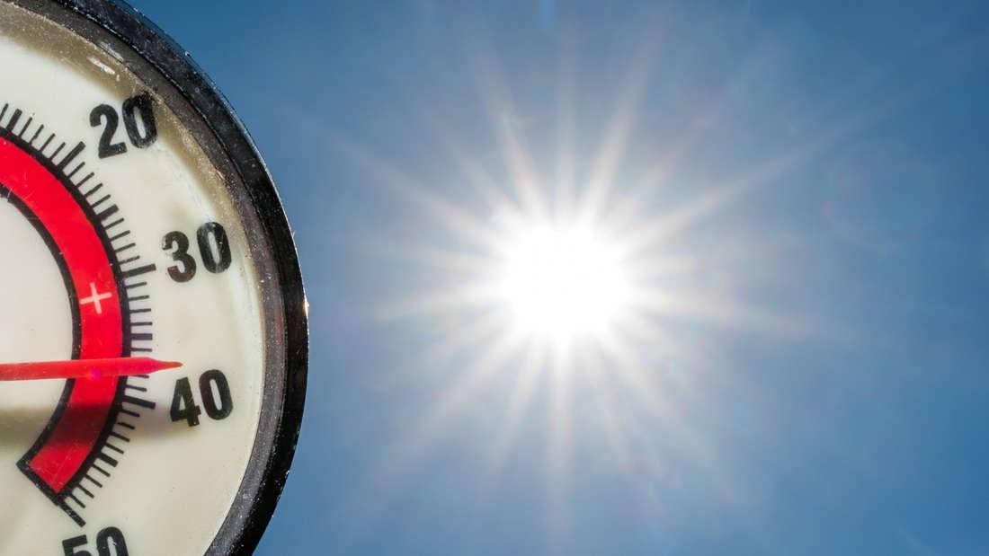 Es gibt Kritik an den Temperaturen, die in Lingen seit Jahren gemessen werden.