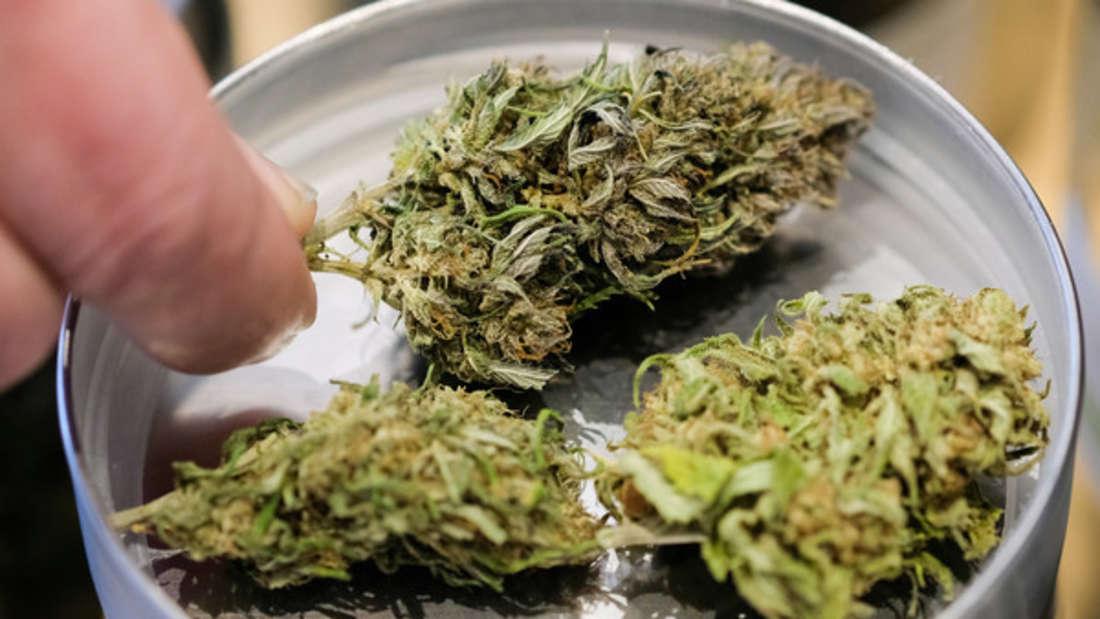 Wer medizinisches Cannabis im Urlaub dabei haben will, muss sich um die richtigen Formulare kümmern.