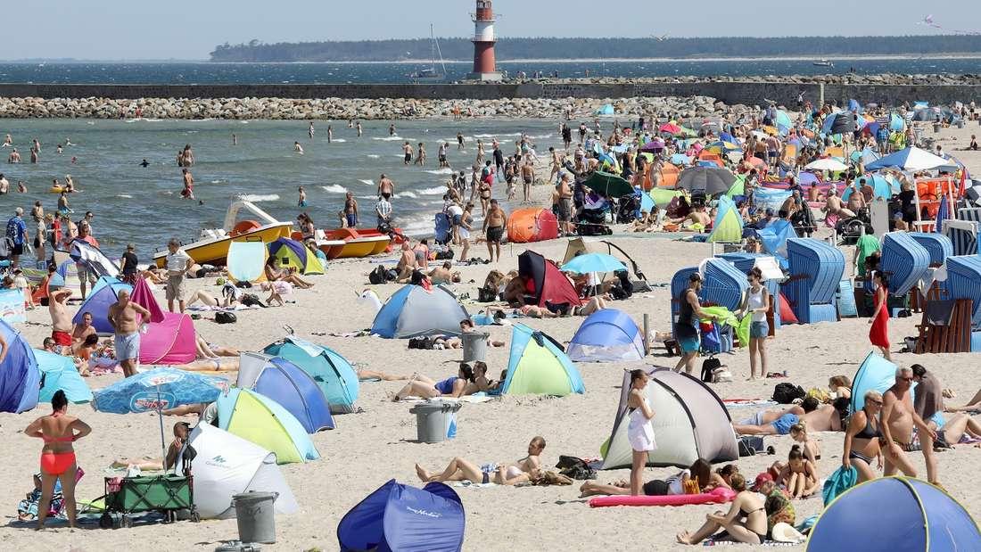 Die Bakterien in der Ostsee vermehren sich bei dauerhaften Wassertemperaturen über 20 Grad.