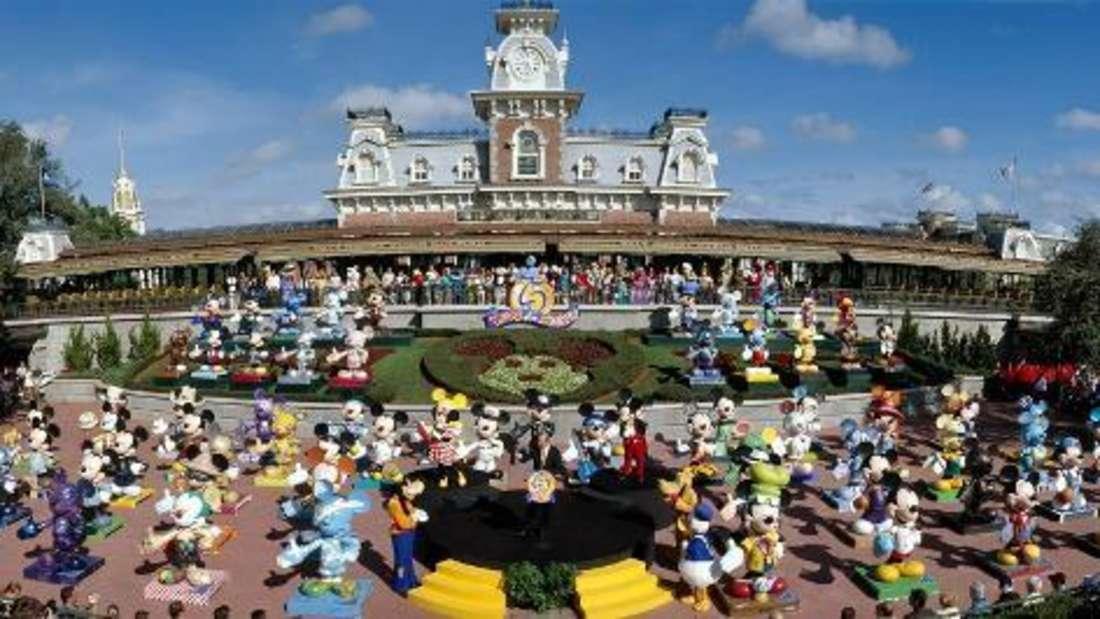 Disney World in Florida wird jedes Jahr von vielen tausend Menschen besucht.