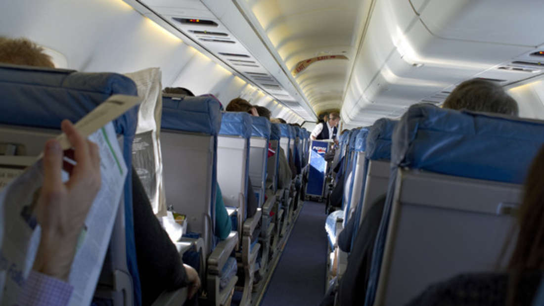 Ein ungewöhnlicher Fluggast sorgte bei American Airlines für Aufsehen.