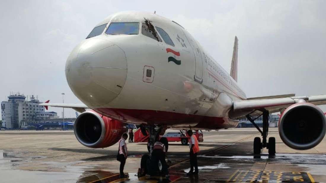 Bienen am Cockpit stellten Flughafen-Mitarbeiter und Passagiere auf die Geduldsprobe.