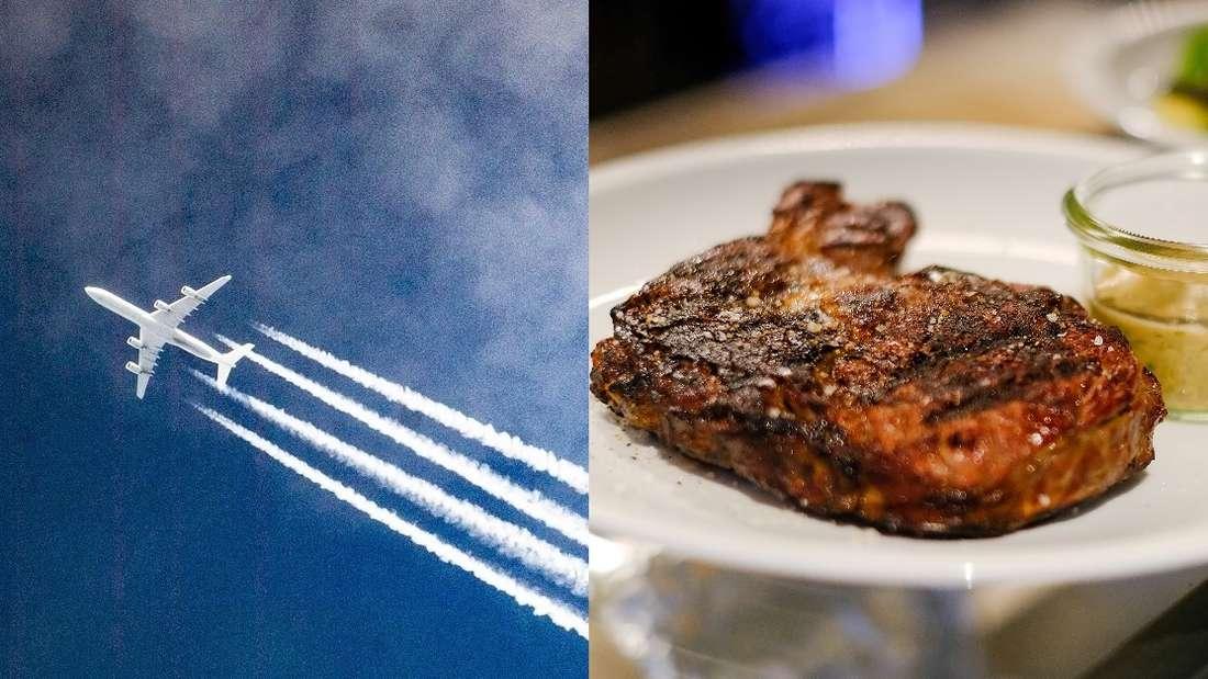 Wasvergrößert den CO2-Fußabdruck mehr- Reisen oder Fleischgenuss?